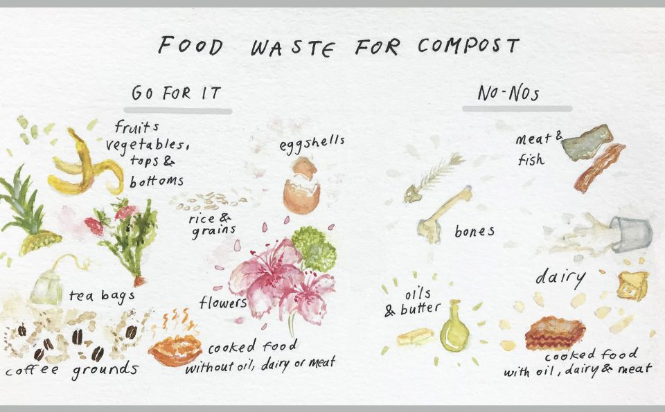 Turning Food Scraps into Compost During COVID-19